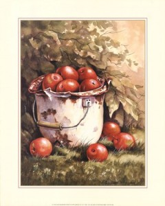 pail-of-apples